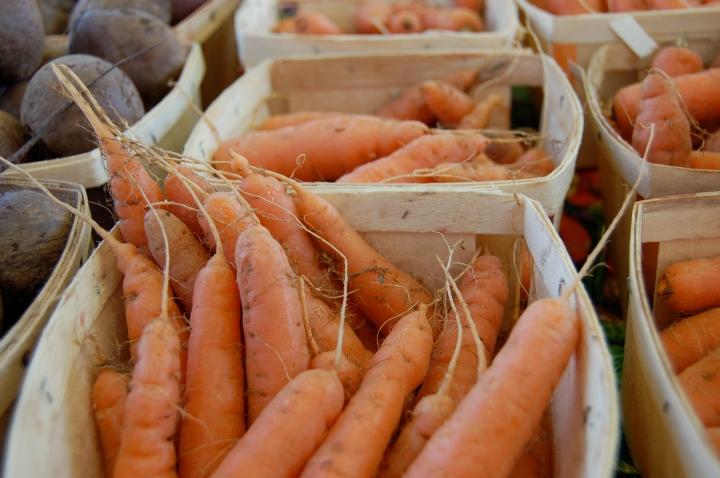 9-21-13 carrots