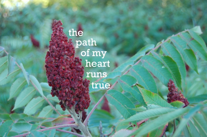 9-24-13 path of my heart