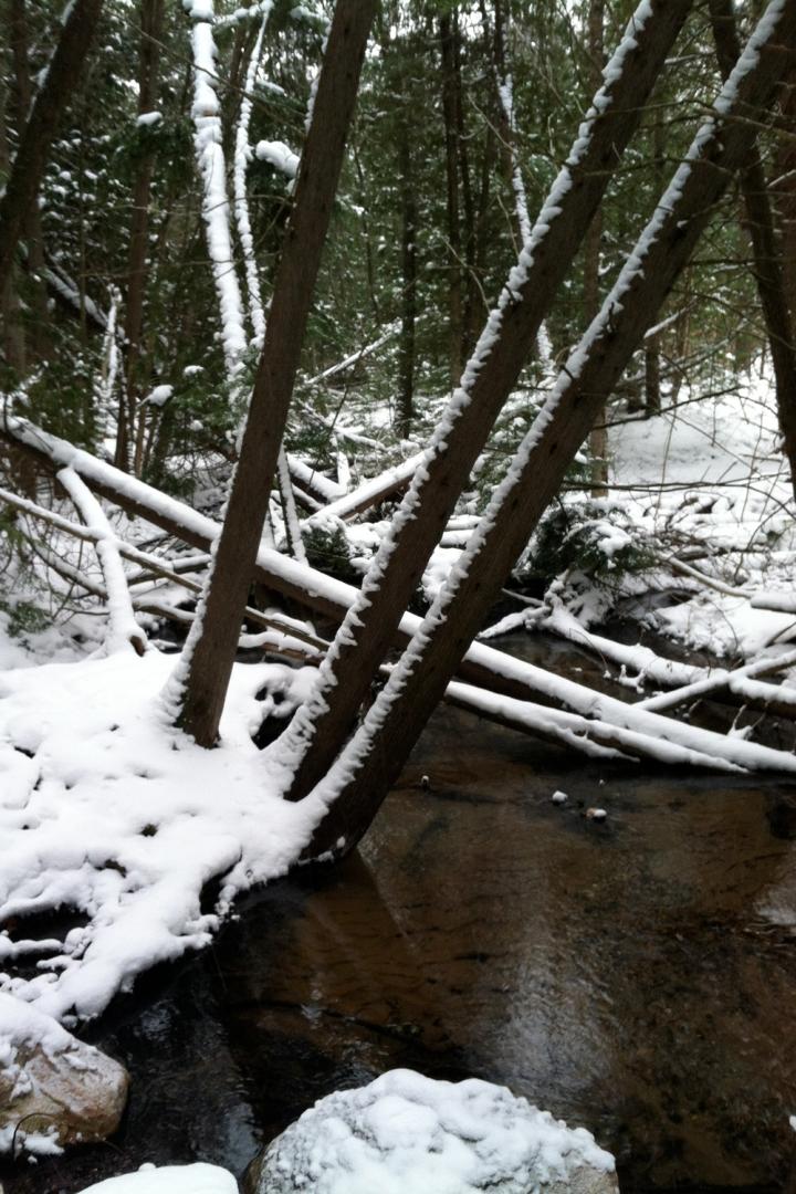 12-16-13 vasa river