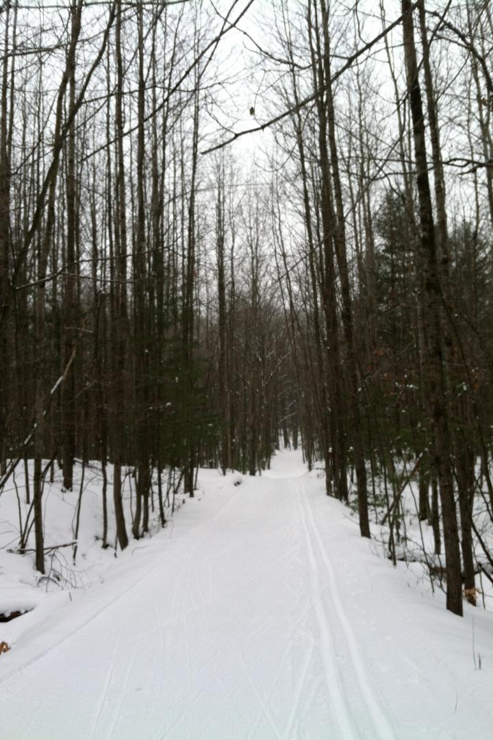 12-16-13 vasa trail